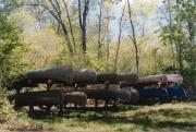 IRWS Canoe Rack