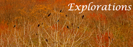 Explorations October 2012 photo copyright Art Donahue