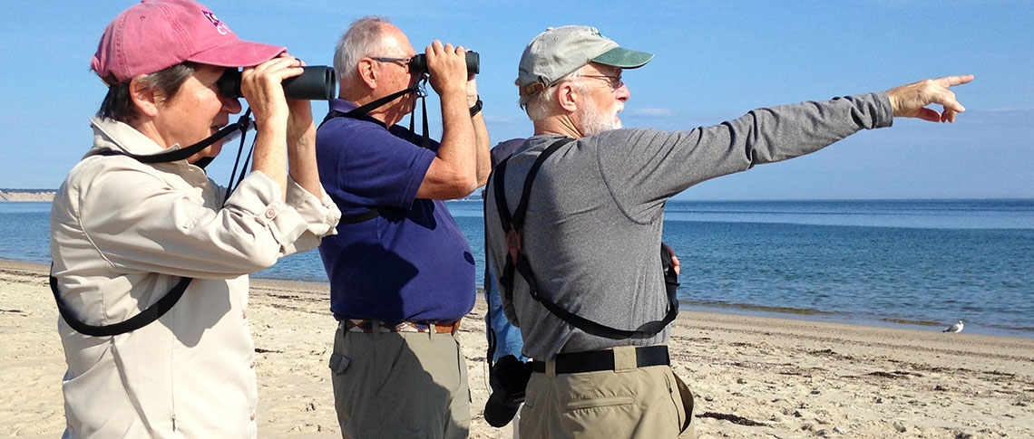Birdathon 2016 pointing on beach