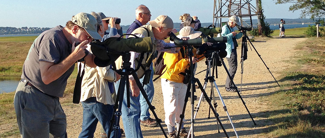 Birdathon 2016 birders with scopes
