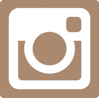 Instagram icon flat
